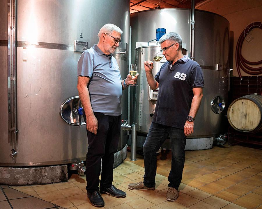 elaboracion-fermentacion